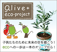 Olive+eco project
