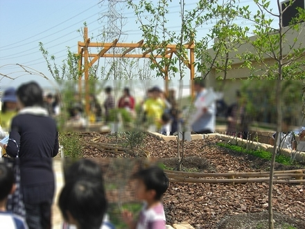 9 屋上庭園(きれい家レオンOlive+ eco-project).JPG
